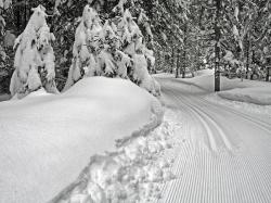 Ski track (Austria)